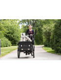 Cargobike Delight Dog Electric Hydraulic